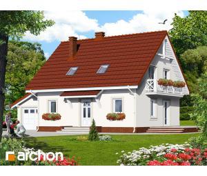 Дом в папоротнике 3