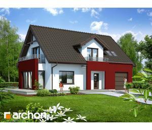 Дом в мискантусе